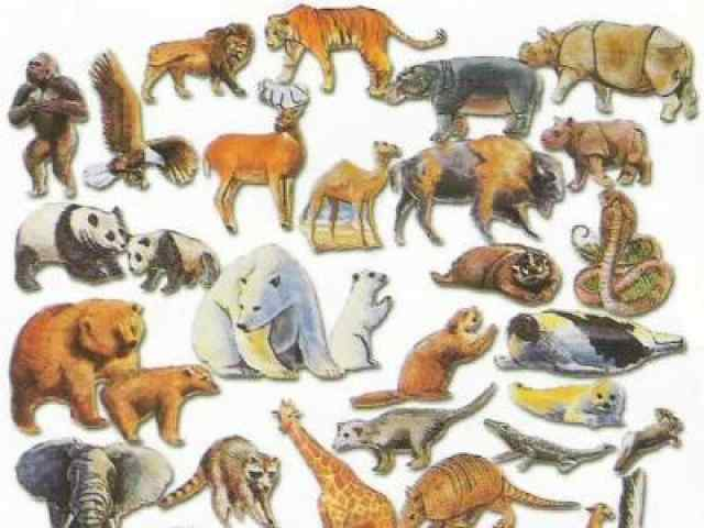 Animals multiple choice questions and answers