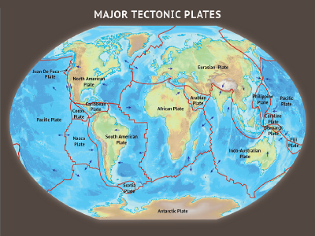 Plate Tectonics multiple choice questions and answers