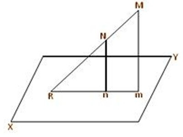 Projection of Point and Line