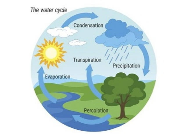 Water Cycle multiple choice questions and answers
