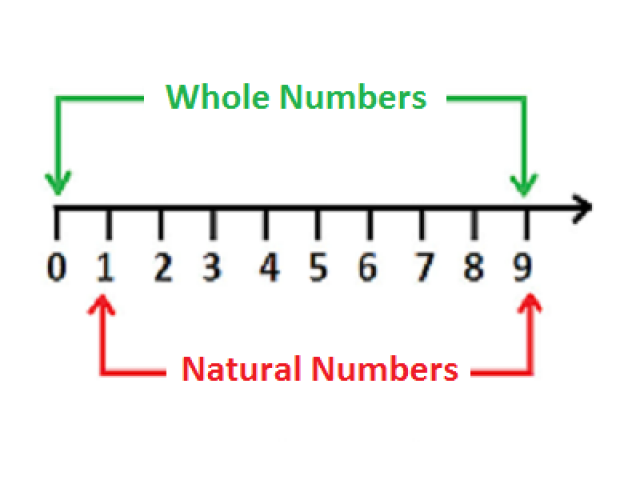 Whole Numbers multiple choice questions and answers